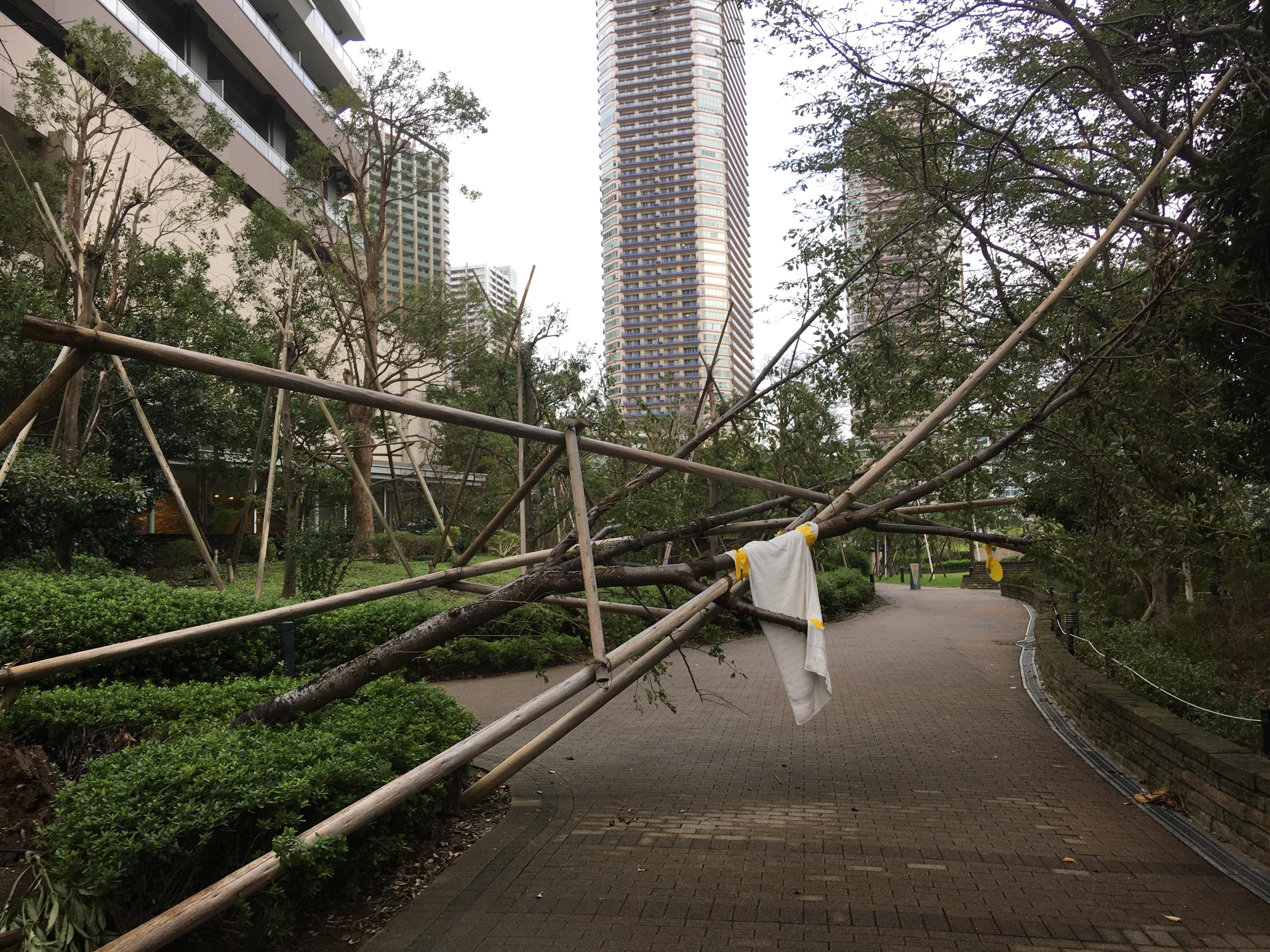 台風 武蔵 小杉